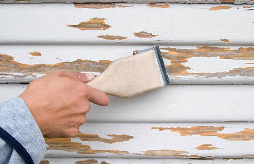 raspando madera